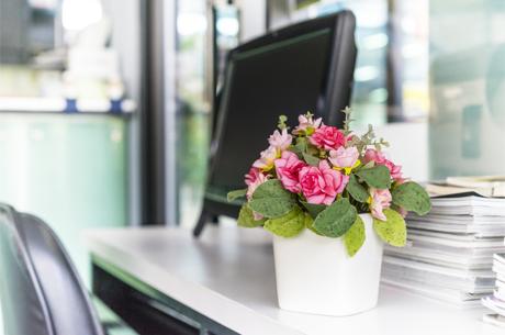 Ofis Ortamında Motivasyona Katkı Sağlayan Çiçekler