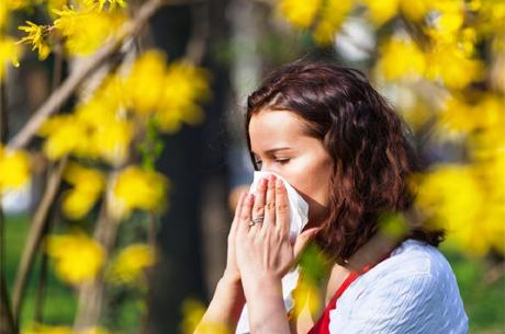 Polen Alerjisi Belirtileri Bu Yıl Daha Erken Başlayabilir