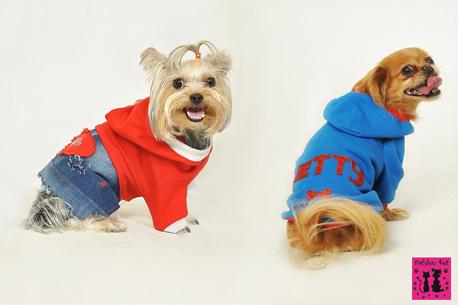 Fashion Pet İle Patili Dostlarımızın Kış Modası